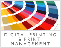 Digital Printing & Print Management